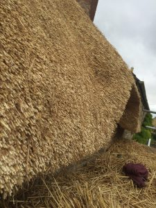 Combed Wheat Straw